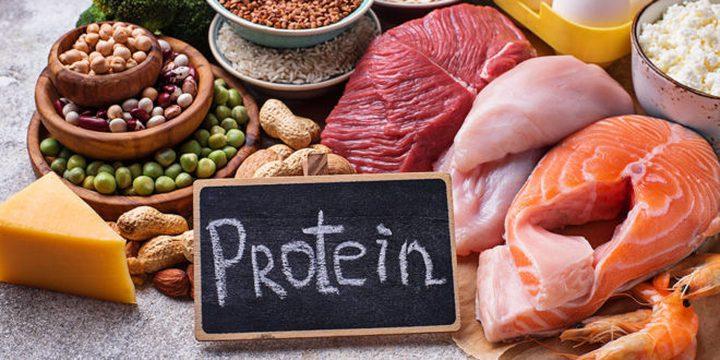 ما هو تأثير تناول البروتين على ممارسة الرياضة ؟