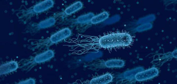 تحذير.. بيئة منزلنا تشجع تكاثر وانتشار بكتيريا خطرة جدا