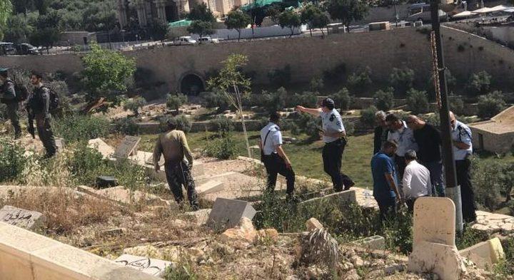مستوطنون يدنسون مقبرة باب الرحمة