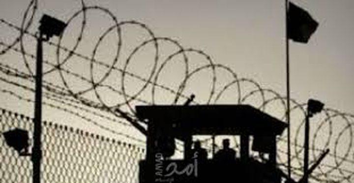 محكمة الاحتلال تقرر الافراج عن القاصر محمود شلبي