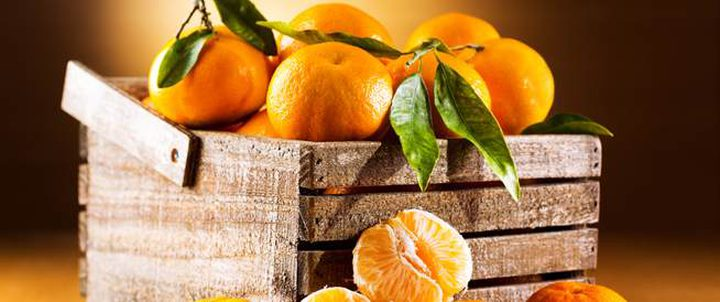 أهم الفوائد الصحية والجمالية لفاكهة اليوسفي