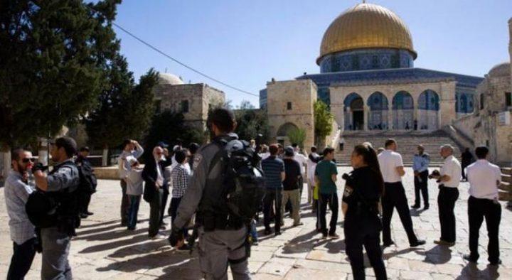 مستوطنون وعناصر من شرطة الاحتلال يقتحمون الأقصى