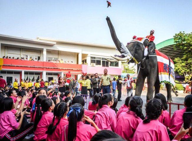 تايلاند.. مدرسة تستعين بالأفيال لتوزيع هدايا رأس السنة على الطلاب