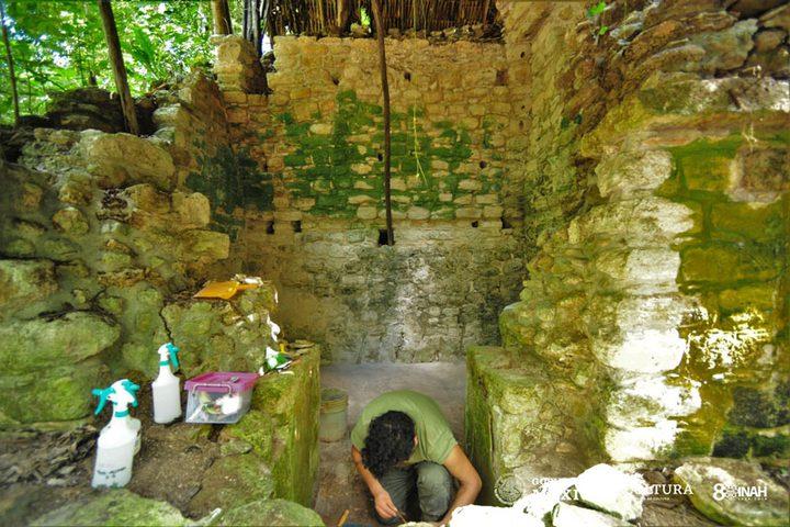 المكسيك.. اكتشاف قصر أثري يعود إلى حضارة المايا