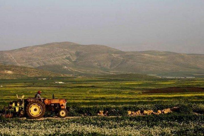 مصادرة أكثر من 100 الف دونم من أراضي الأغوار