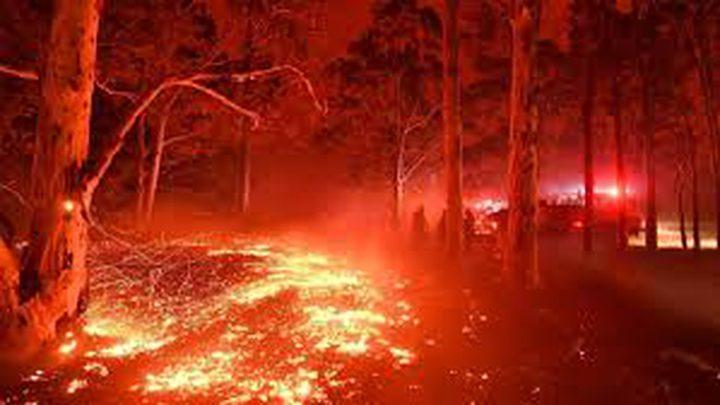 حرائق استراليا مستمرة والنيران تقترب من سيدني