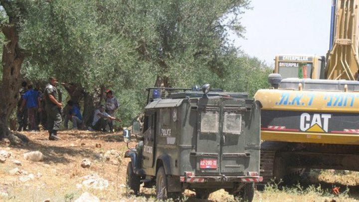 الاحتلال يجرّف 50 دونما من أراضي الخليل
