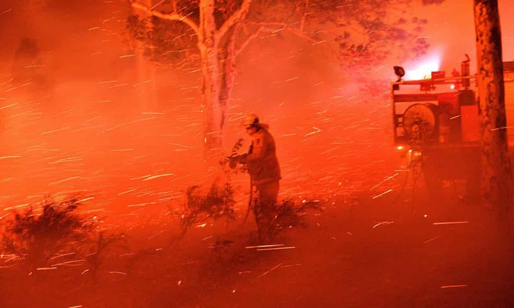 حرائق أستراليا تحيل 10 ملايين هكتار من الغابات إلى رماد