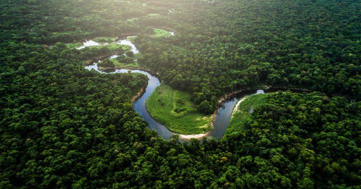 العثور على طفلة برازيلية تاهت في غابات الأمازون لأيام