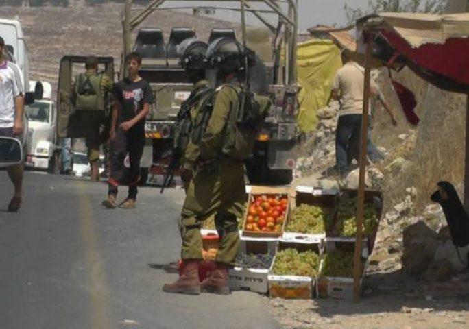 الاحتلال يتلف بسطات الباعة جنوب الخليل