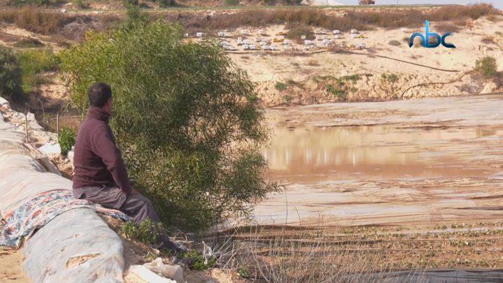 خسائر فادحة يتكبدها المزارعون في غزة إثر المنخفضات الجوية