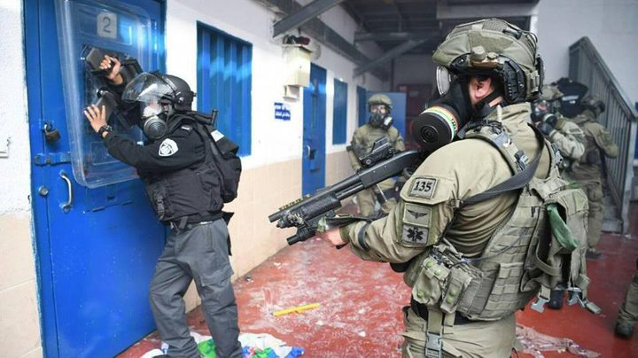 """سلطات الاحتلال توافق على نقل ممثل الأسرى القاصرين إلى """"الدامون"""""""