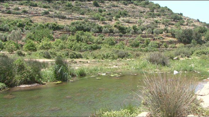 """الاحتلال يعلن عن 7 """"محميات طبيعية"""" استيطانية في الضفة"""