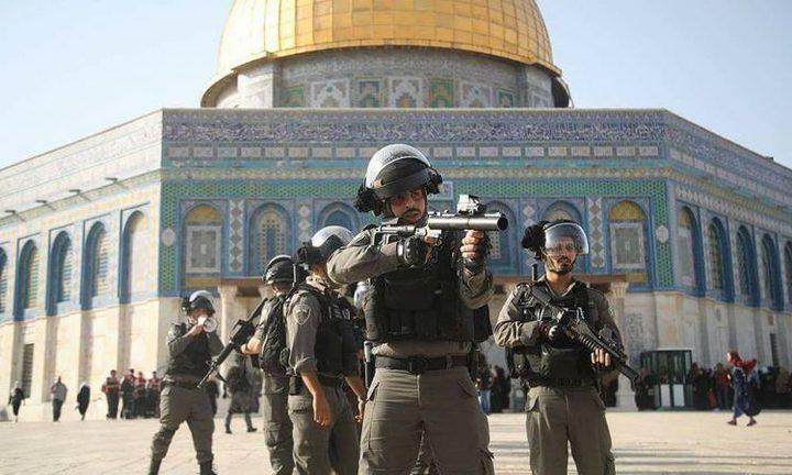 الخارجية تطالب الاتحاد الأوروبي بموقف أقوى في مواجهة معركة القدس