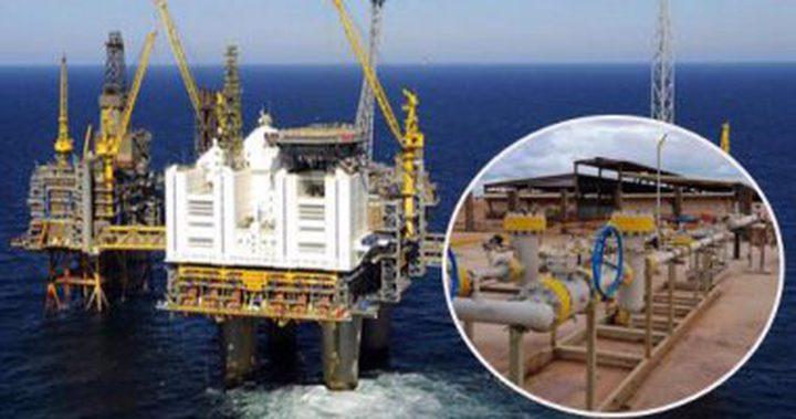 مخاوف تحاصر بيع الغاز المسال في مصر