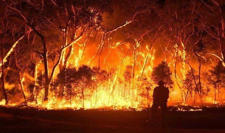 أستراليا تواجه موجة حر ورياح عاتية قد تسبب حرائق