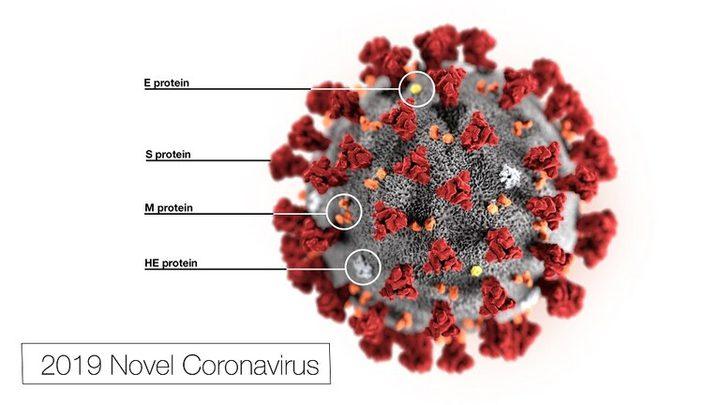 """دواء عشبي صيني قد يكبح فيروس """"كورونا""""!"""