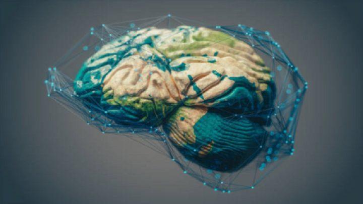 بنية دماغية غير عادية تدفع البالغين إلى الكذب والسرقة والعنف