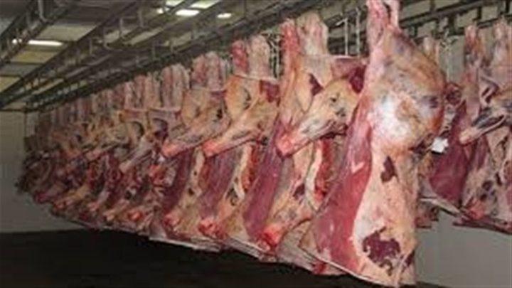 الاقتصاد: فتح باب تقديم طلبات استيراد اللحوم المجمدة