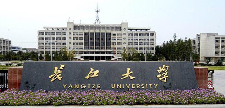 جامعات وكليات صينية تستأنف التدريس عبر الإنترنت