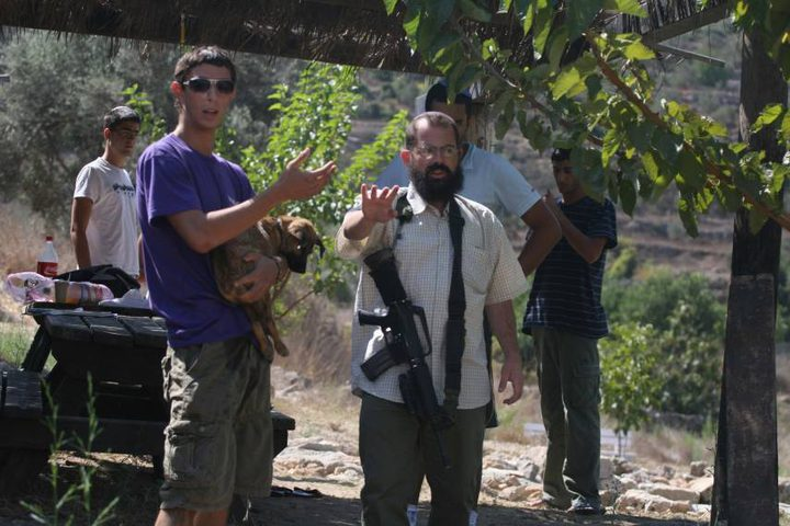 مستوطنون يقطعون 200 شجرة كرمة جديدة في بلدة الخضر