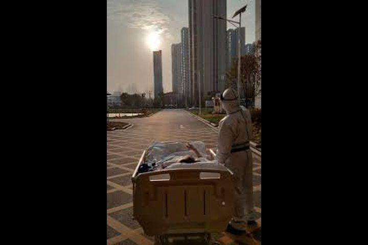 شاهدوا الصورة التي جمعت طبيب ووهان ومريضه برفقة الشمس