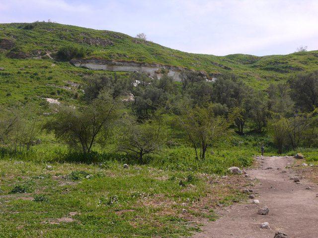 قرية تل.. بلد الخير في ظل أزمة كورونا
