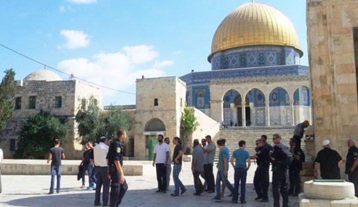 مستوطنون يقتحمون باحات المسجد الاقصى برفقة شرطة الاحتلال