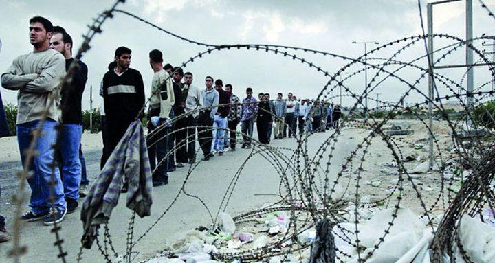 أبو جيش: نطالب العمال بالعودة الى بيوتهم والالتزام بالحجر المنزلي