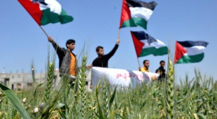 إطلق حملة رقمية لإحياء ذكرى يوم الأرض داخل اراضي عام 48