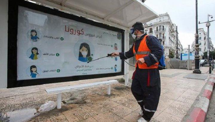 ارتفاع حالات التعافي من كورونا بالجزائر