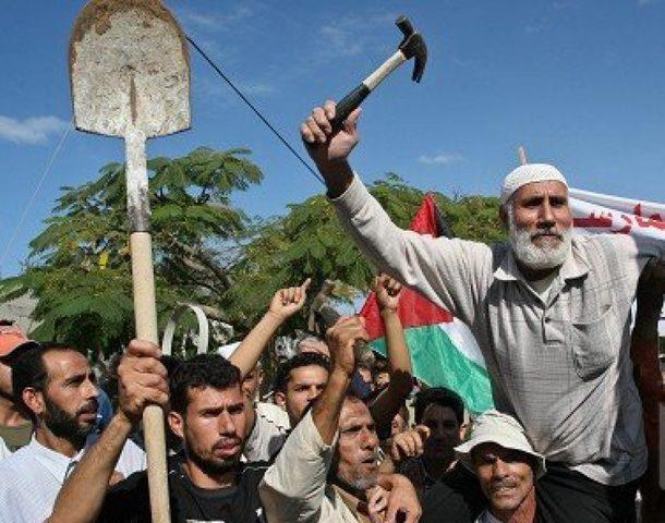 رابط فحص مساعدات العمال المتضررين في غزة بسبب كورونا