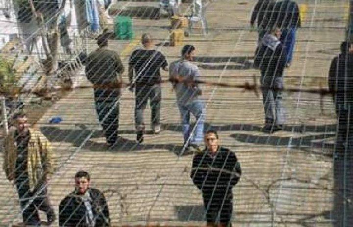 نقابة المحاميين: 5 آلاف أسير يتعرضون لانتهاكات من قبل الاحتلال