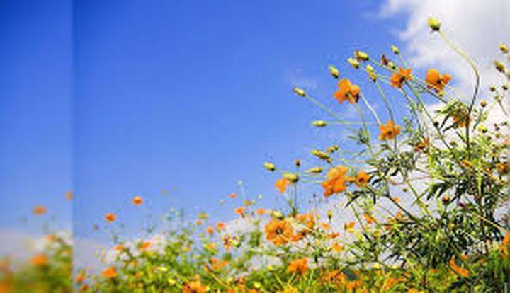 الطقس: درجات الحرارة أعلى من معدلها السنوي بحدود 4 درجات