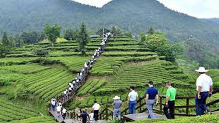 مقاطعة هوبي تعيد فتح أكثر من 60% من مواقعها السياحية