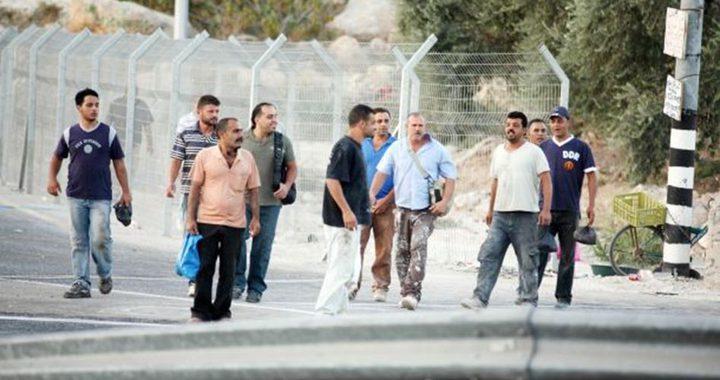 صالح رأفت: نرفض دخول العمال لأراضي عام 48 في ظل انتشار كورونا