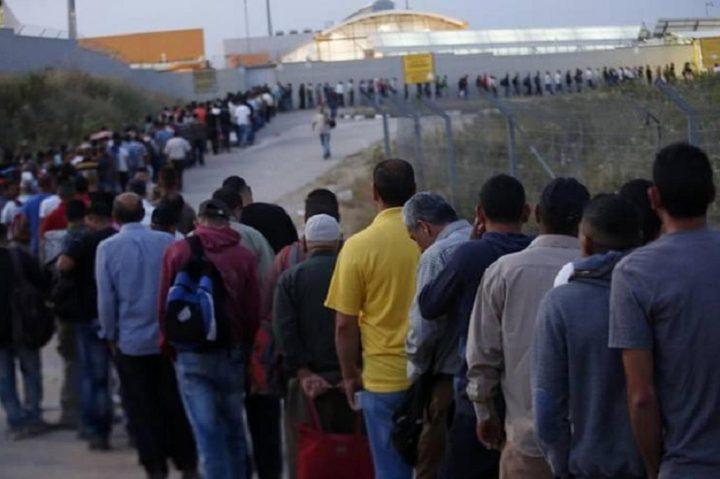 شاهر سعد: ما يقارب 90 الف عامل سيتوجهون للعمل في الاراضي المحتلة