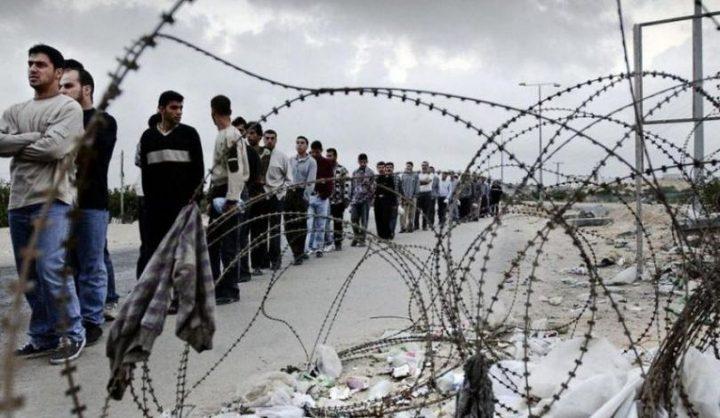 8500 عامل دخلوا الأراضي المحتلة وقرار بادخال فوج آخر