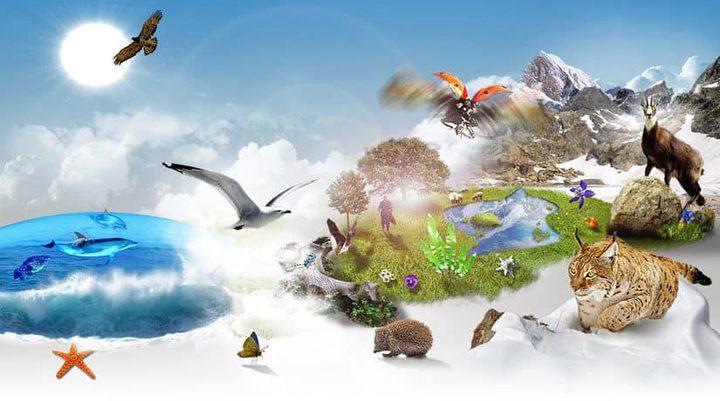 مسابقة اليوم العالمي للتنوع الحيوي فلسطين