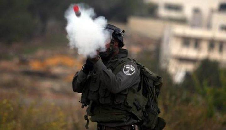 احتراق أراض زراعية شرق يطا بسبب قنابل أطلقها الاحتلال
