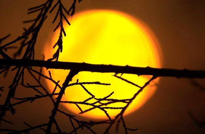 """تحذير.. الشمس تدخل في فترة """"سبات كارثي"""" !"""