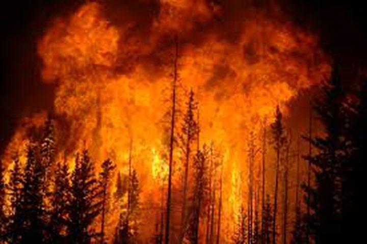 مستوطنون يضرمون النار في الأراضي الزراعية شرق طولكرم