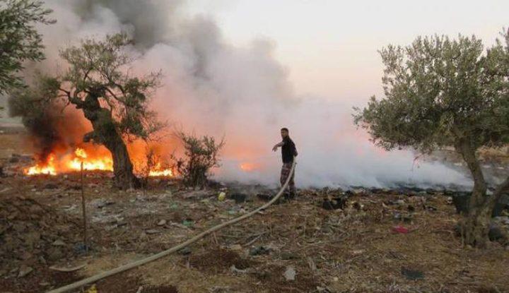 الدفاع المدني يخمد حريقا التهم850 شجرة زيتون وأشجار حرجية في جنين