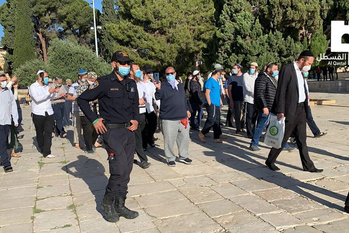 اقتحم أكثر من 75 مستوطنا المسد الأقصى صباح اليوم الأحد وسط حماية قوات الاحتلال