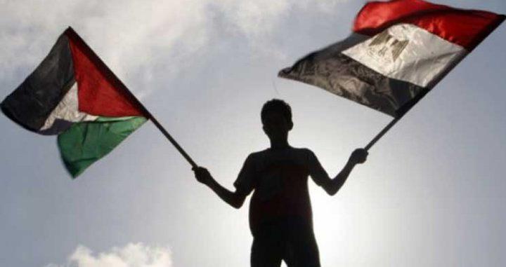 وزير الخارجية المصري يحذر من أي خطوة إسرائيلية لضم أراض في الضفة