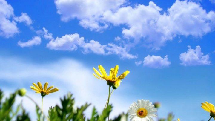 الطقس: انخفاض على درجات الحرارة مع بقاء الأجواء حارة
