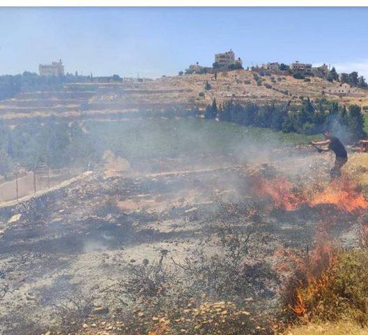 الخليل: إخماد حريقا بمحاصيل زراعية وأشجار في يطا