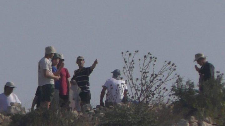 مستوطنون يحرقون أراضي في قرية بورين جنوب نابلس