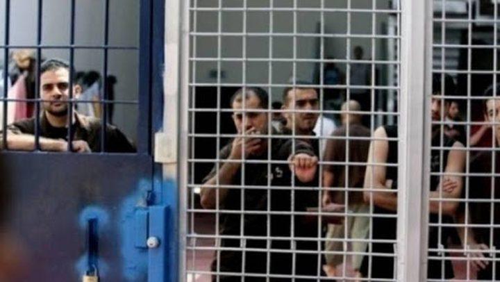 أبو بكر :زيارات الأسرى في سجون الاحتلال قد تستأنف الشهر القادم
