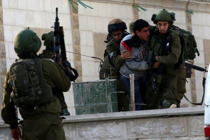 الاحتلال يعتقل شابا على حاجز قلنديا